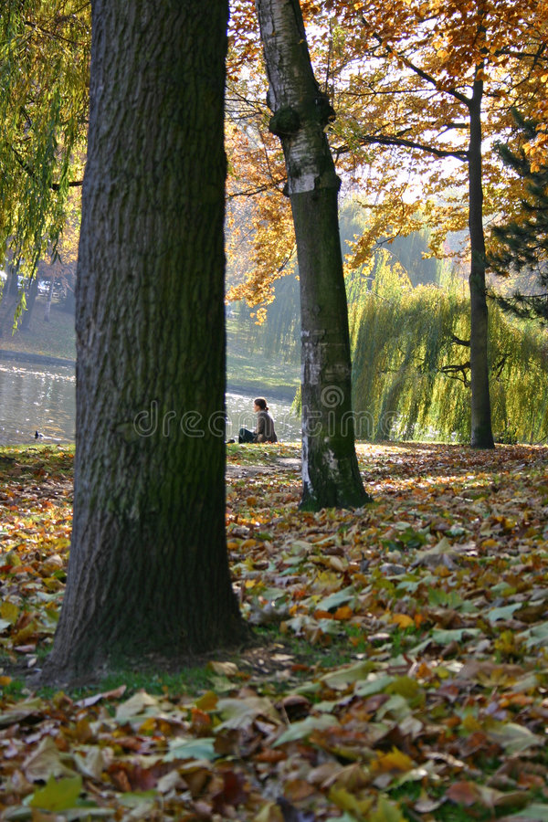 Het rusten in park stock foto