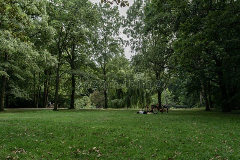 Het rusten in het park stock fotografie