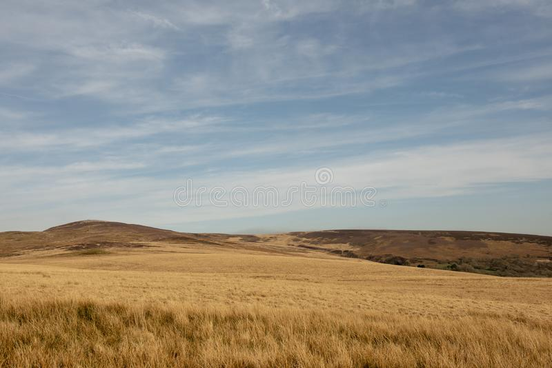 Het rustige landelijke beeld van het wildernislandschap royalty-vrije stock afbeeldingen