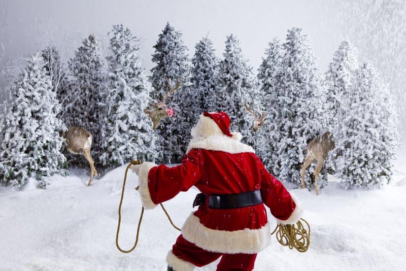 Het ruzie maken van de Kerstman rendier stock afbeeldingen