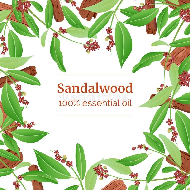 Het sandelhout plakt en verlaat kaartmalplaatje met exemplaarruimte Het malplaatje van de kaart tak het in dozen doen royalty-vrije illustratie