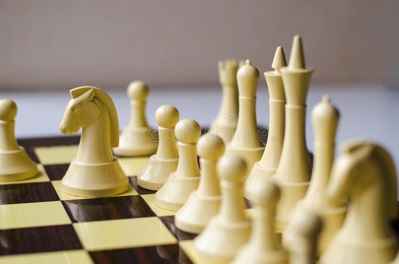 Het schaakspel, paard is het stuk in nadruk royalty-vrije stock foto's