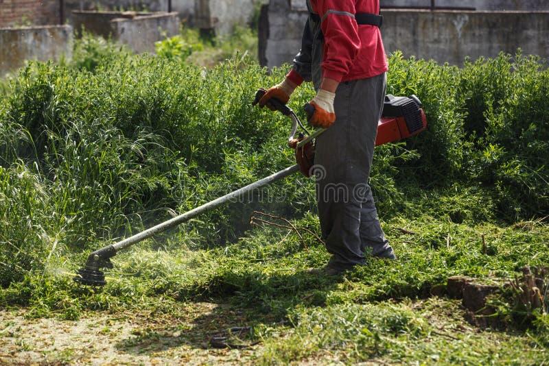 Het scherpe gras van de grasmaaimachinearbeider op groen gebied royalty-vrije stock foto