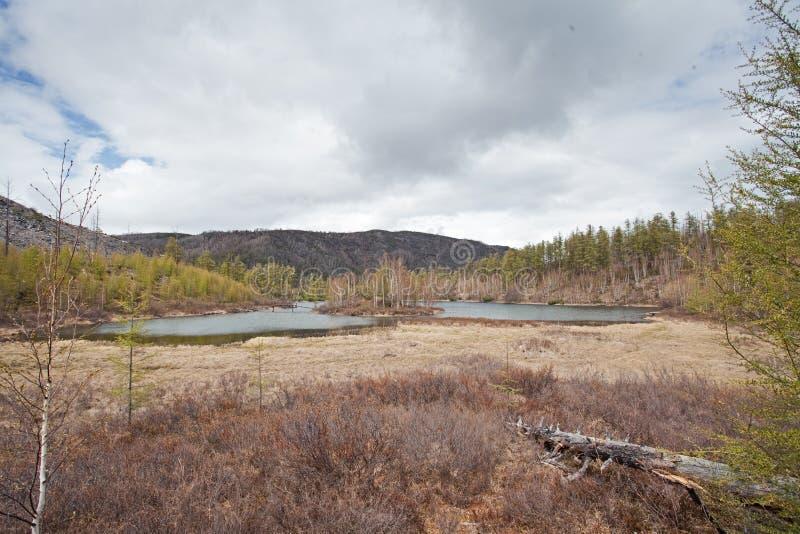 Het schiereiland van Kamchatka, aard royalty-vrije stock foto's