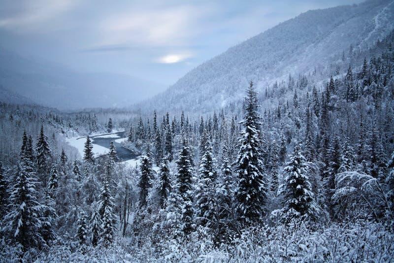 Het Schiereiland van Kenai, Alaska royalty-vrije stock foto