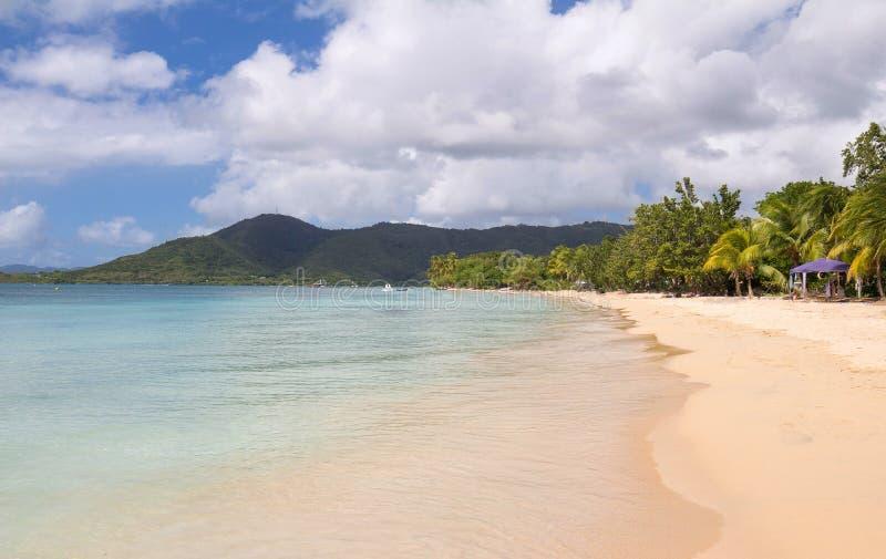 Het schilderachtige Caraïbische strand, het eiland van Martinique, de Franse Antillen stock fotografie