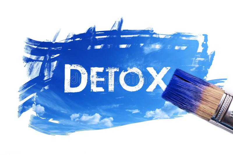 Het schilderen detox tijdwoord stock illustratie
