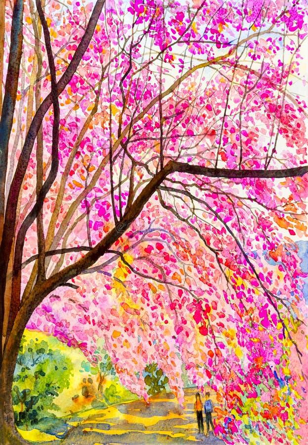 Het schilderen roze kleur van wilde himalayan kers en de minnaars stock illustratie