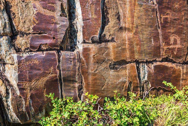 Het schilderen van de rots Gorny Altai, Rusland royalty-vrije stock afbeelding