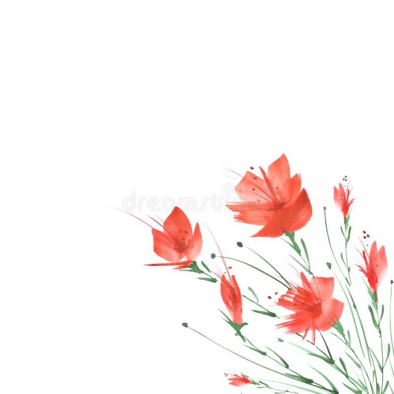Het Schilderen van de waterverf Een boeket van bloemen van rode papavers, wildflowers op een wit ge?soleerde achtergrond Hand get vector illustratie