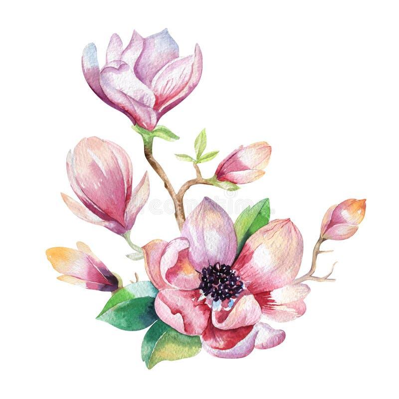 Het schilderende behang van de Magnoliabloem Hand getrokken Waterverf bloemen vector illustratie