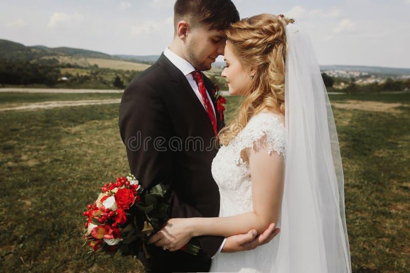 Het schitterende bruid en bruidegom stellen bij gebied het paar van het luxehuwelijk stock fotografie