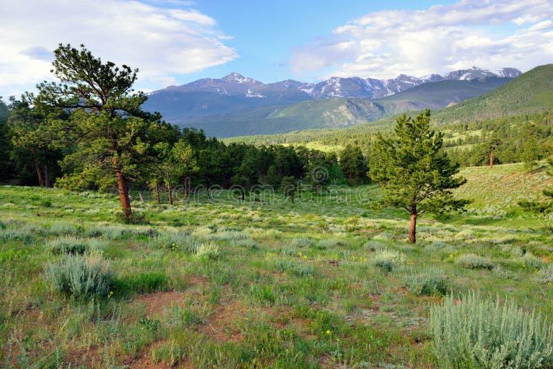 Het schitterende rotsachtige hoge alpiene landschap van het bergen nationale park, Colorado royalty-vrije stock afbeeldingen