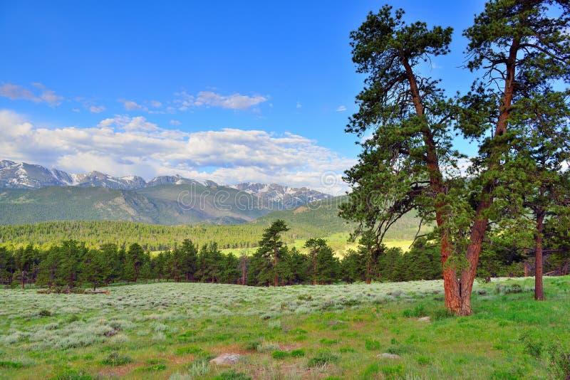 Het schitterende rotsachtige hoge alpiene landschap van het bergen nationale park, Colorado stock foto