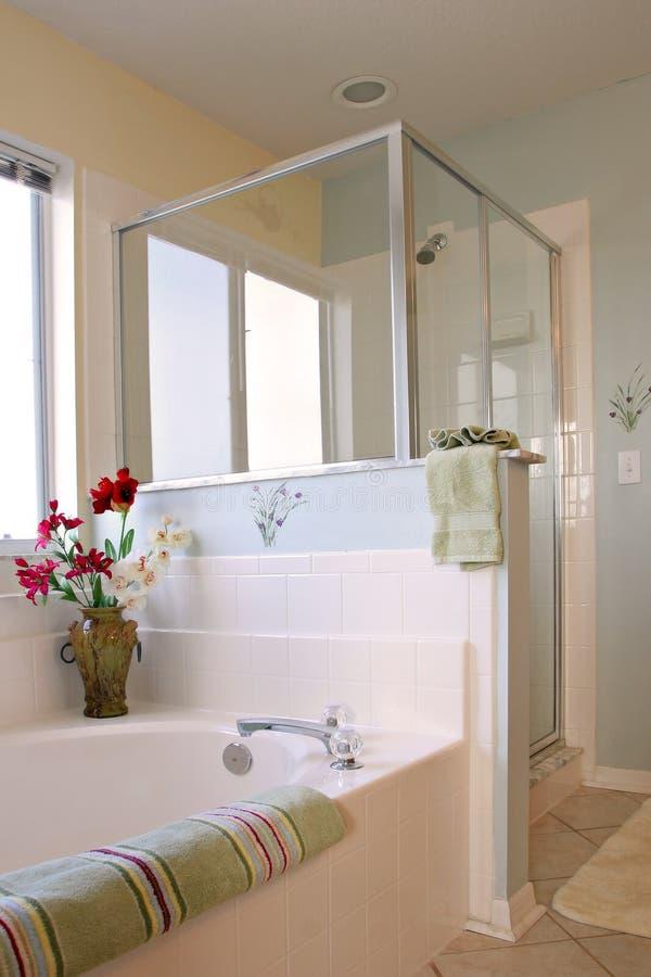 Het schone Binnenland van de Badkamers stock afbeelding