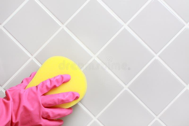 Het schoonmaken. stock afbeeldingen