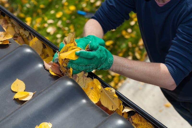 Het schoonmaken van de dakgoot tijdens de herfst stock fotografie