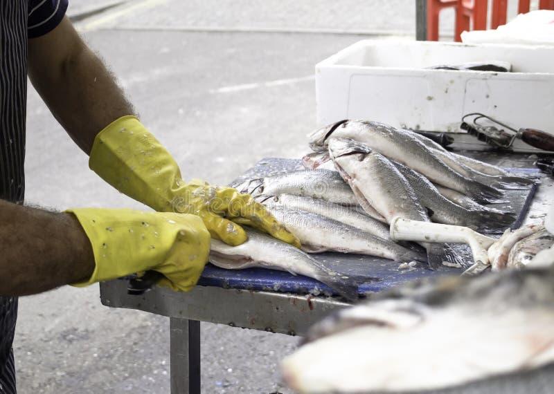 Het schoonmaken van vissers