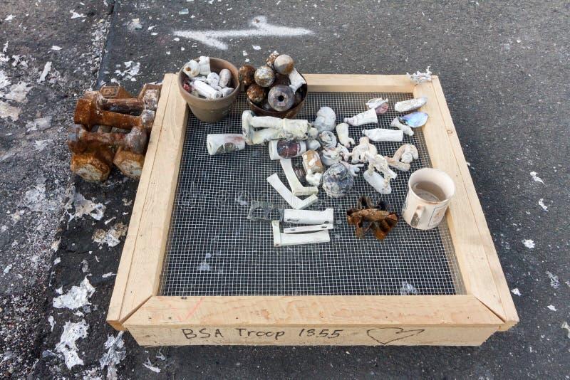 Het schreeuwen in de Beeldzoeker: Één Maand na 2017 Sonoma Coun royalty-vrije stock afbeeldingen