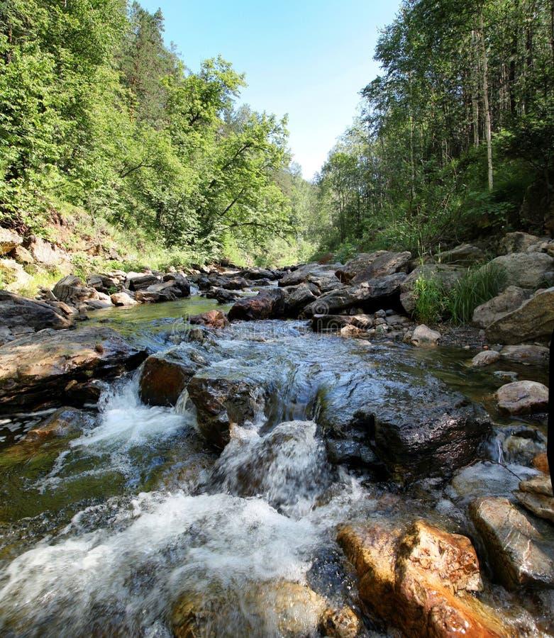 Het schuim van rivierstroomversnelling op een bebost gebied stock afbeeldingen