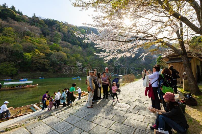 Het seizoen van de de kersenbloesem van Japan ` s stock foto's