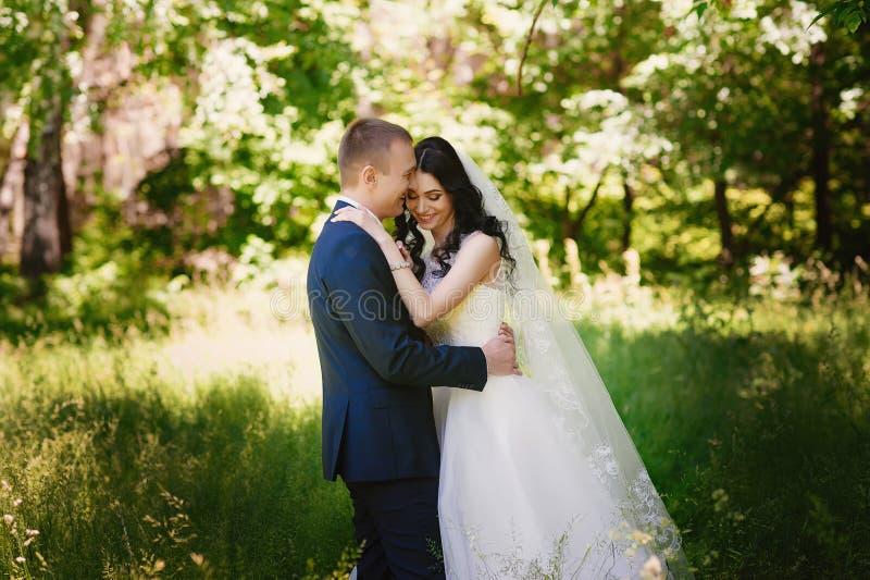 Het sensuele portret van de bruid en de bruidegom omhelzen, liefde, familie, huwelijk, verhoudingen, levensstijl stock foto