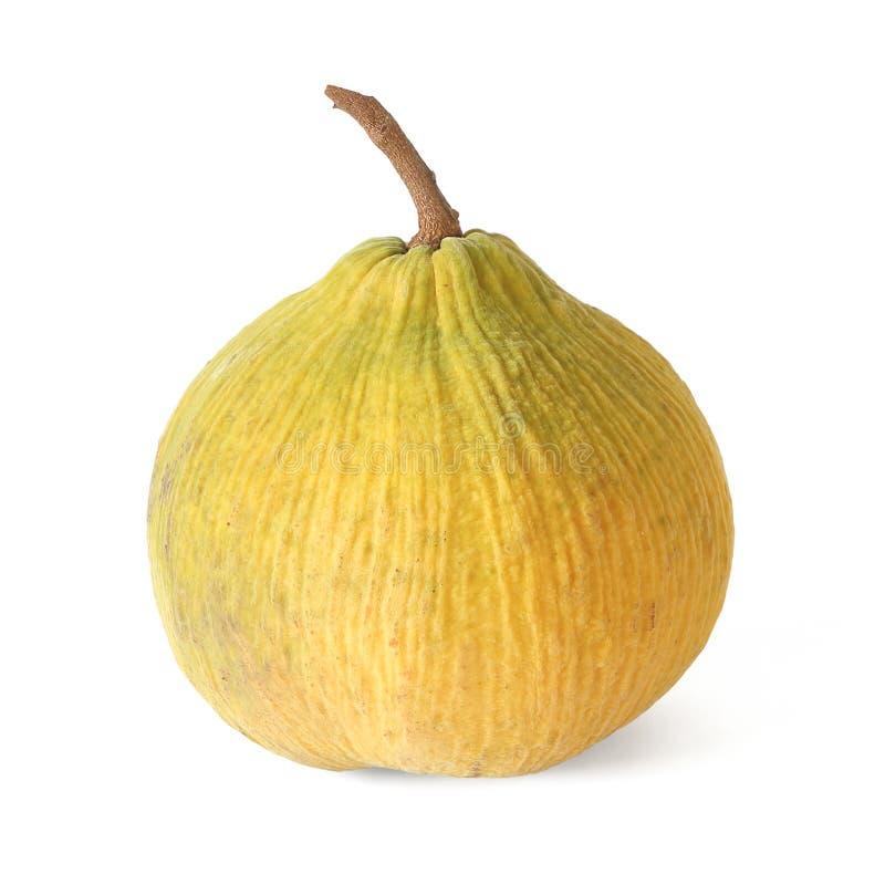 Het sentulfruit op witte achtergrond wordt geïsoleerd die stock afbeeldingen