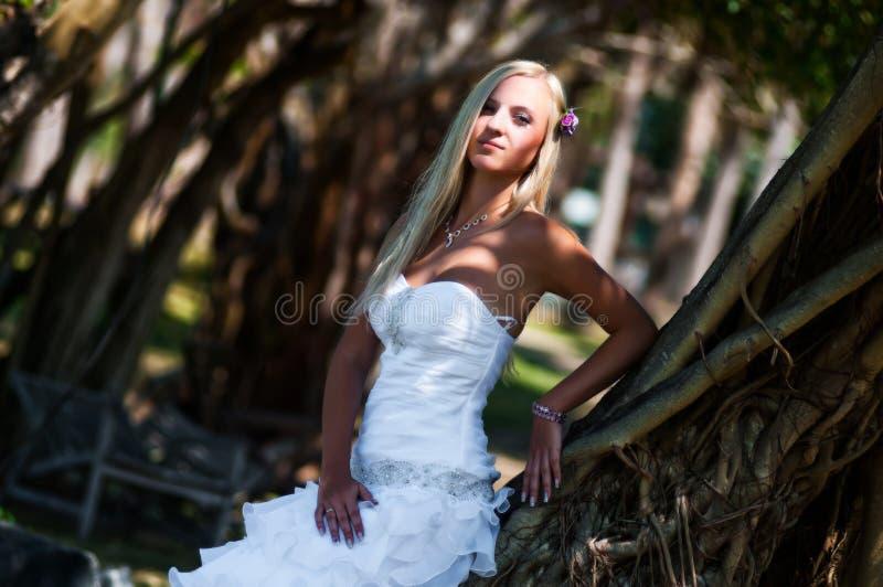 Het sexy bruid stellen in het midden van tropische bomen stock foto