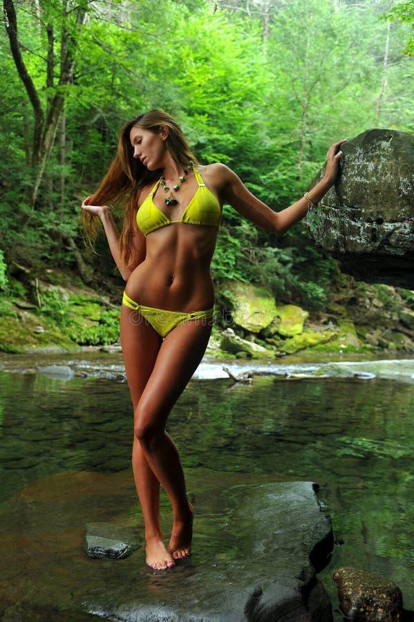 Het sexy jonge vrouw stellen in ontwerperbikini bij exotische plaats van bergrivier royalty-vrije stock fotografie