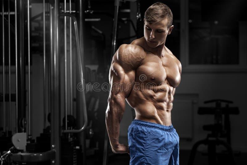 Het sexy spiermens stellen in gymnastiek, gevormde buik, die triceps tonen Sterke mannelijke naakte torsoabs, het uitwerken royalty-vrije stock afbeelding