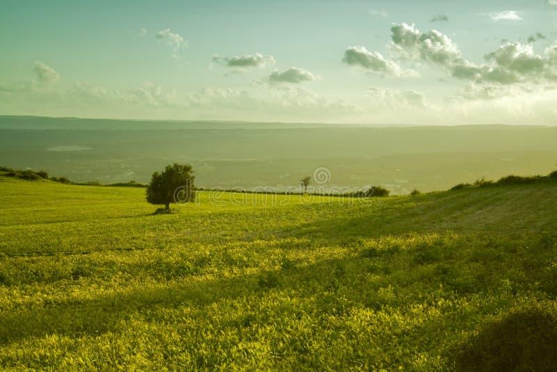 Het Siciliaanse landschap royalty-vrije stock foto