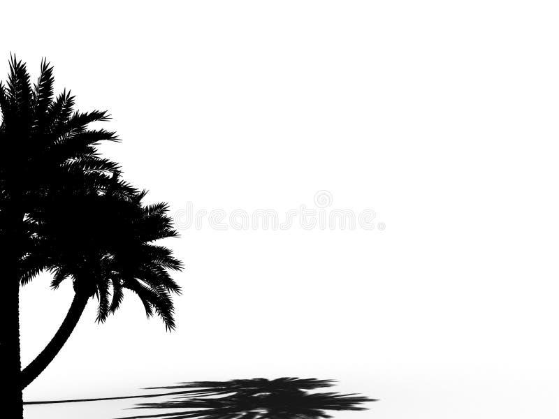 Het silhouet 3d CG van de palm stock illustratie