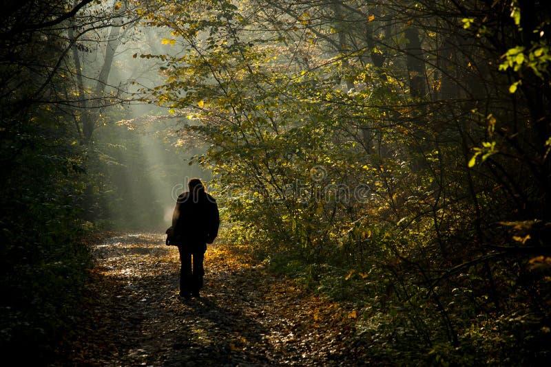 Het silhouet dat van de mens op de herfst loopt royalty-vrije stock afbeeldingen