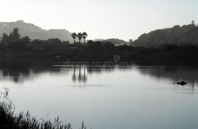 Het Silhouet van Afrika van Palmen in Misty Pond worden weerspiegeld die stock afbeelding