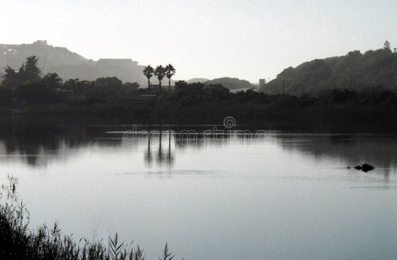 Het Silhouet van Afrika van Palmen in Misty Pond worden weerspiegeld die royalty-vrije stock foto's