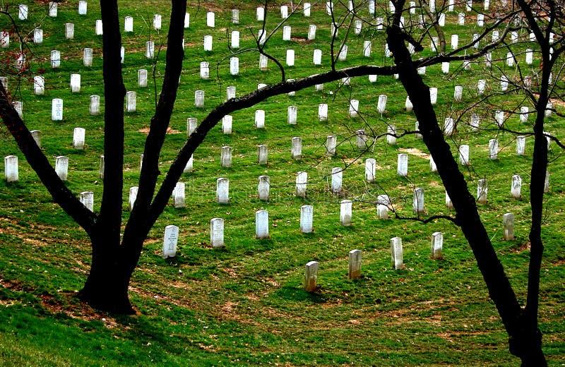 Het Silhouet van Arlington stock fotografie