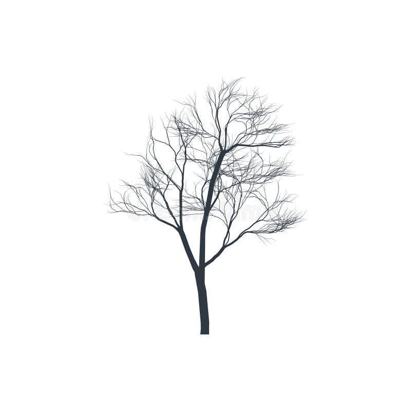 Het silhouet van de boom op witte achtergrond Naakte Boom stock illustratie
