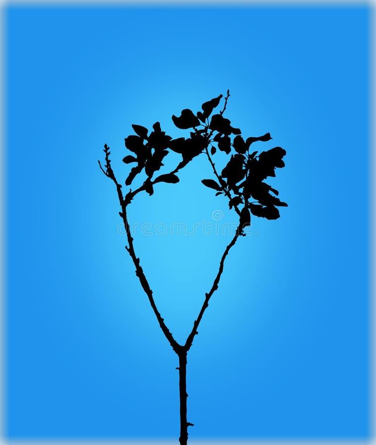 Het silhouet van de boomtak op schone blauwe achtergrond royalty-vrije stock afbeelding