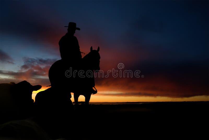 Het Silhouet van de cowboy stock fotografie