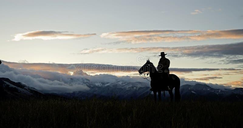 Het silhouet van de cowboy royalty-vrije stock fotografie