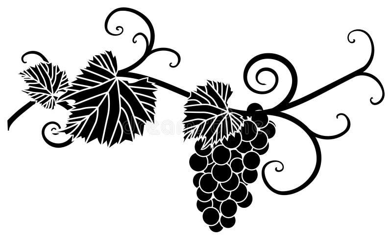Het silhouet van de druif stock illustratie