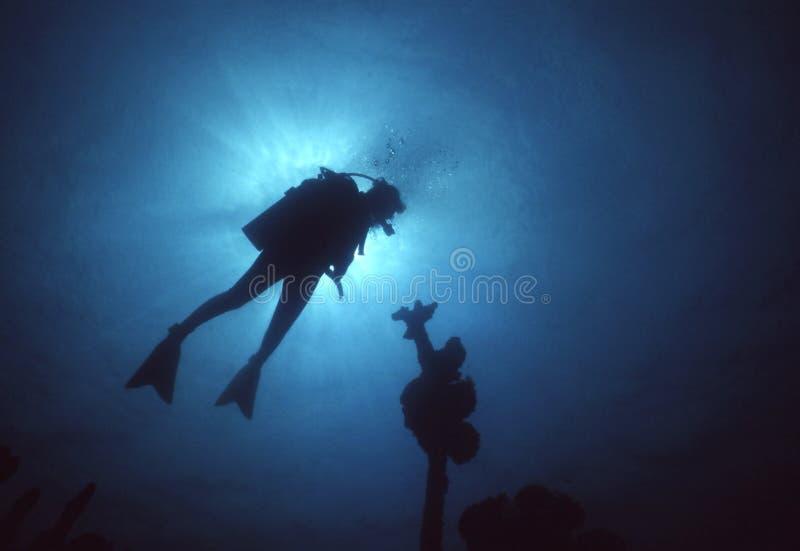 Het Silhouet van de duiker stock foto