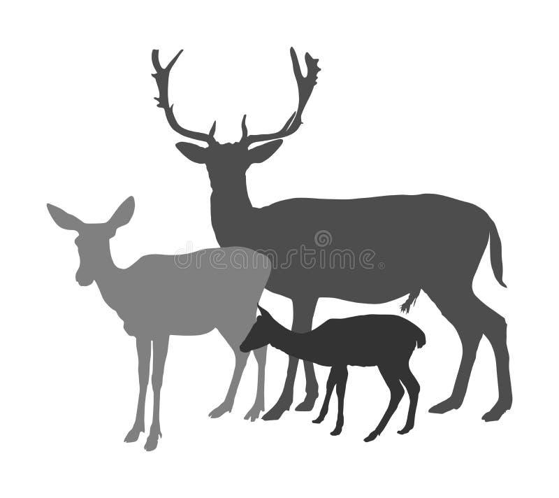 Het silhouet van de hertenfamilie dat op witte achtergrond wordt geïsoleerd Rendierpaar met fawn Trotse Edele Herten stock illustratie