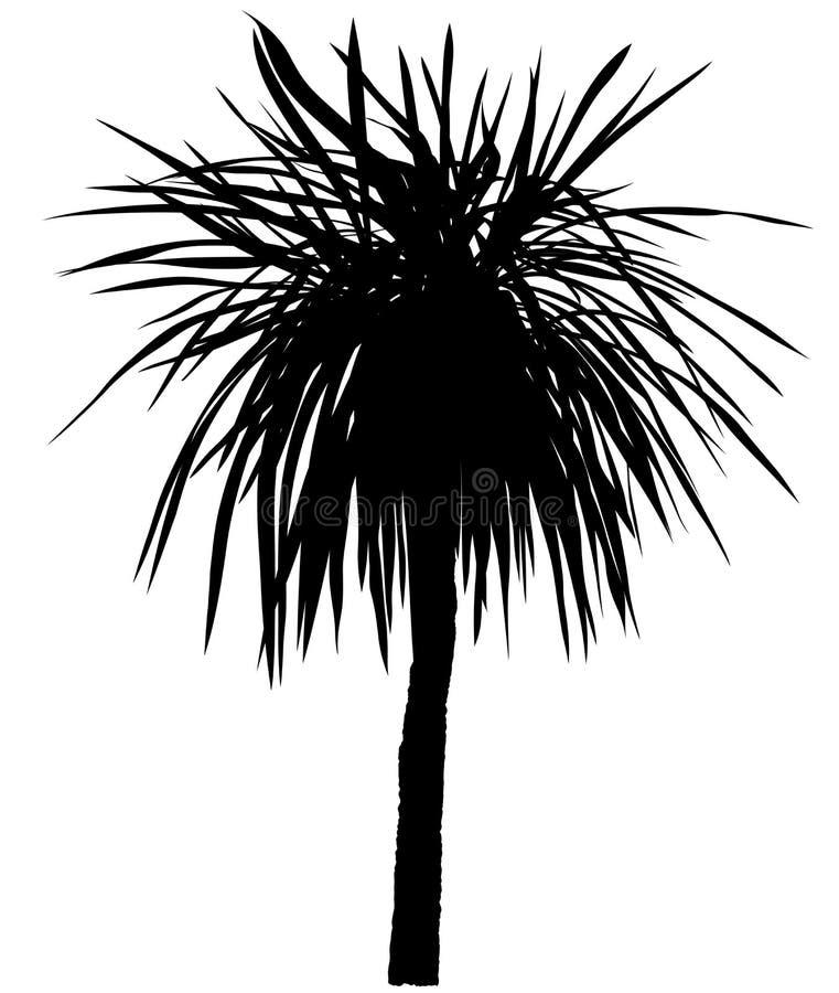 Het Silhouet van de palm royalty-vrije illustratie