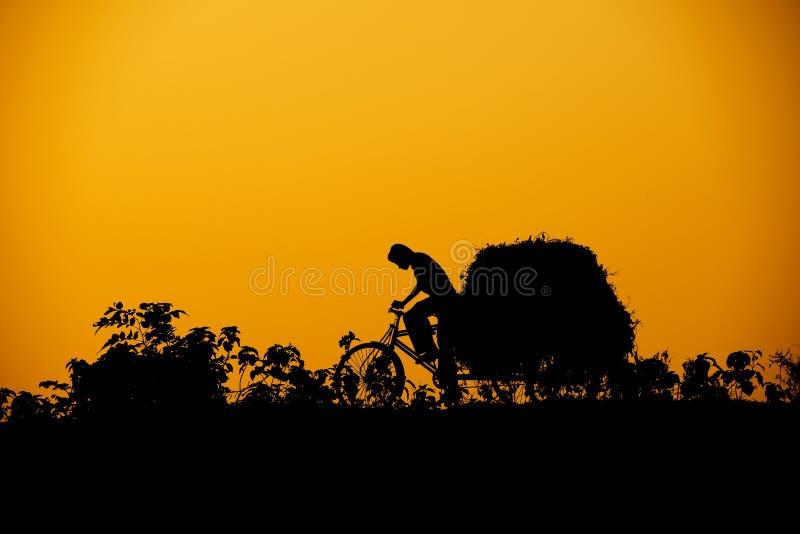 Het silhouet van de riksja stock afbeeldingen