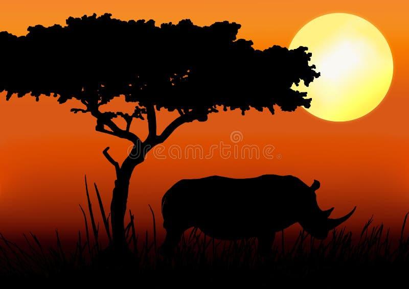 Het silhouet van de rinoceros in zonsondergang
