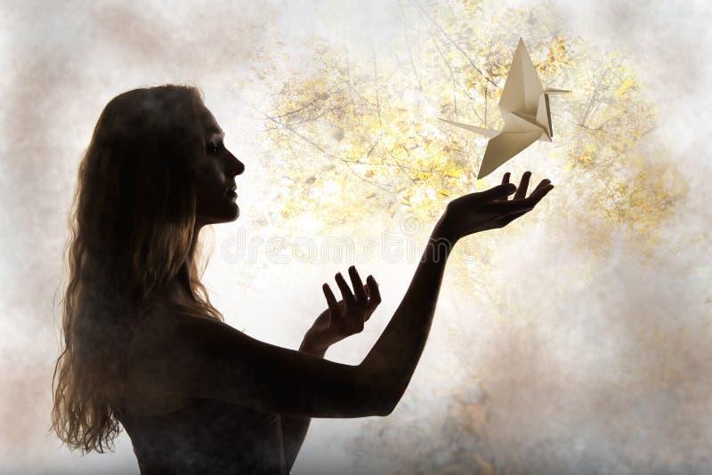 Het silhouet van de schoonheidsvrouw met vliegende document kraan royalty-vrije stock afbeeldingen