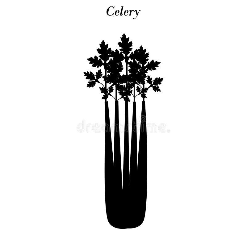 Het silhouet van de selderieillustratie royalty-vrije illustratie
