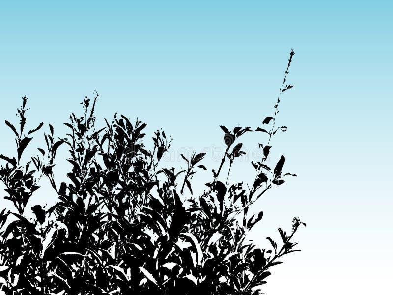 Het silhouet van de struik royalty-vrije illustratie