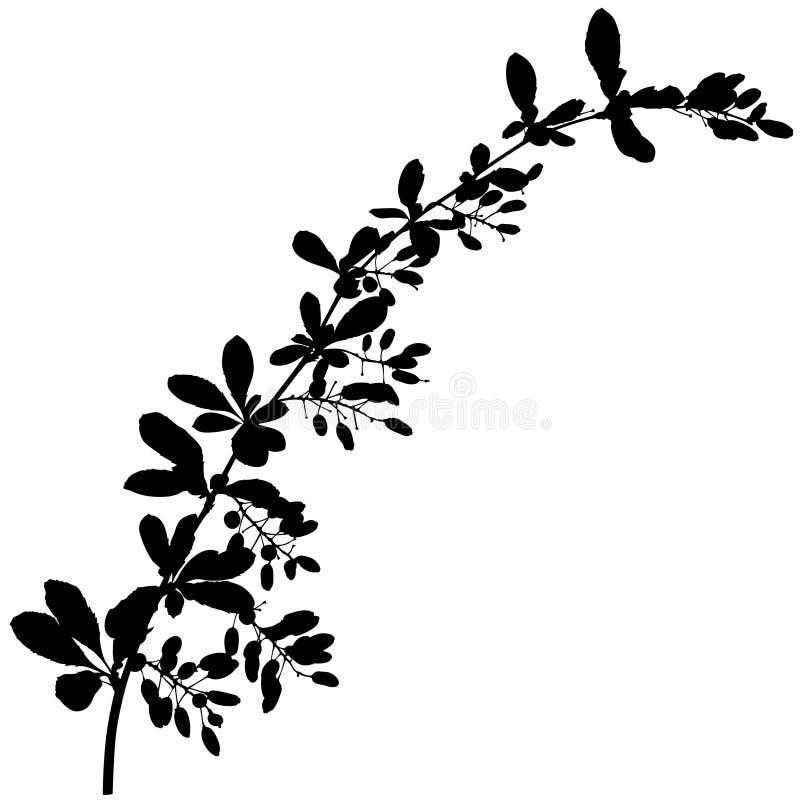 Het Silhouet van de tak stock illustratie